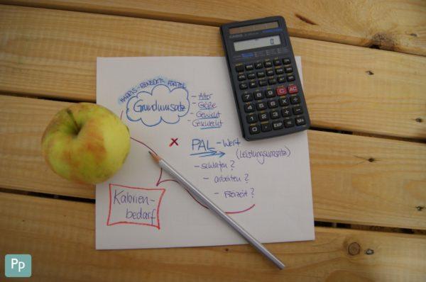 Einfache Methode um den eigenen Kalorienbedarf auszurechnen.
